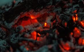Picture ash, heat, coal