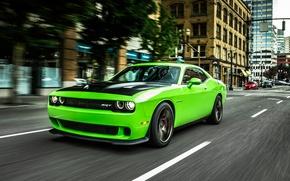Picture Stream, Speed, Street, Dodge, Challenger, 2015, Srt, Hallcat