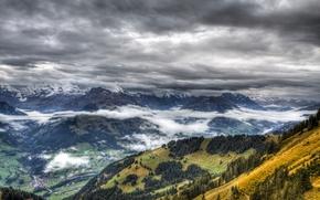 Picture forest, clouds, landscape, mountains, fog, the village