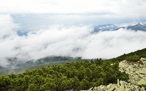 Picture clouds, landscape, mountains, nature, stones, Ukraine, shrub, Transcarpathia