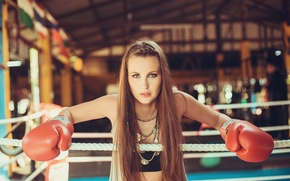 Wallpaper look, the ring, girl, Boxing, gloves