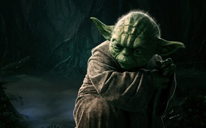 Picture Sci-Fi, Fog, The, Green, Back, Master, Male, Darkness, StarWars, Elderly, Episode V, Yoda Dagobah, Star ...
