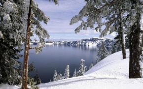 Picture winter, forest, snow, trees, lake, hills