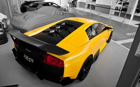 Picture yellow, Lamborghini, supercar, supercar, yellow, murcielago, Lamborghini, murciélago, lp670-4