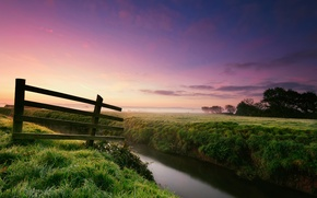 Picture grass, trees, nature, fog, Rosa, river, the fence, morning