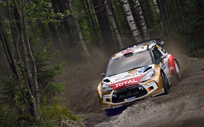 Picture Forest, Citroen, DS3, WRC, Rally, Meeke