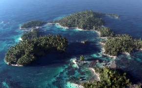Picture sea, Islands, trees, palm trees, the ocean, art, the view from the top, reef, Klontak