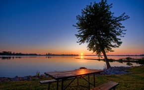 Wallpaper tree, Lake, table, sunset