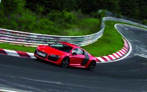 Picture Audi, Trees, Turn, Track, V10, E-Tron