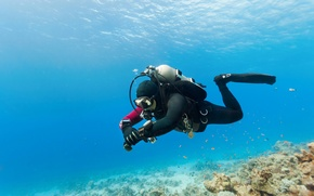 Picture water, diving equipment, recreational activity