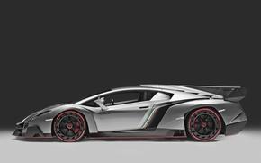 Picture color, view, Lamborghini, flag, back, Italy, fin, Veneno