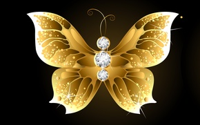 Picture the dark background, abstraction, butterfly, pebbles, gold