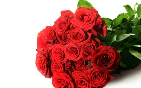 Picture flowers, red, photo, roses, bouquet