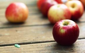 Wallpaper macro, table, fruit, apples, Wallpaper, WALLPAPERS, pictures