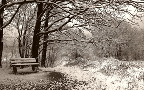 Picture bench, Winter, Sepia
