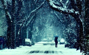Picture road, girl, snow, trees, photo, background, mood, Wallpaper, feelings, kiss, frost, pair, guy, winter
