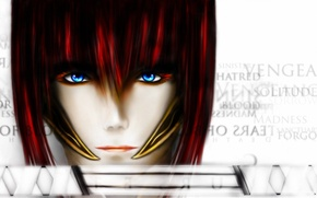 Picture girl, face, labels, sword, katana, art, red
