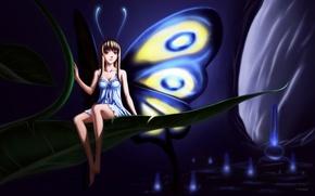 Picture anime, fairy, vincent