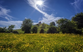 Picture the sky, clouds, trees, flowers, England, hill, meadow, England, buttercups, Somerset, Burrow Mump, Burrowbridge, Somerset, …