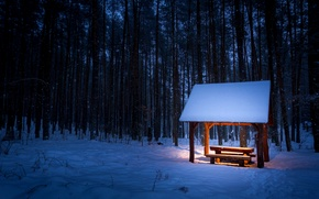 Picture winter, forest, light, snow, trees, bench, snowflakes, traces, table, lighting, shop, canopy, the bushes, bench