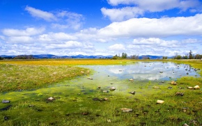 Picture summer, the sky, grass, clouds, mountains, nature, glade, swamp, horizon