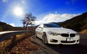 Picture BMW, white, front, 428i