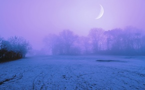 Wallpaper the sky, snow, trees, night, fog, the moon, glade, Winter, lilac