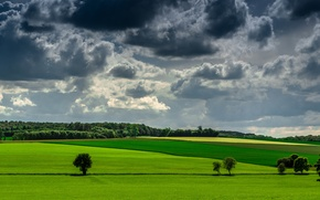 Picture the sky, grass, clouds, trees, green, field, farm