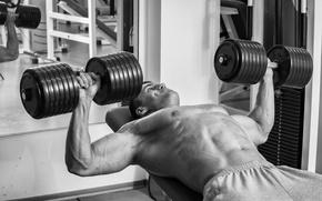 Picture power, chest, workout, gym, dumbbells, bodybuilder