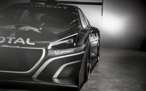 Picture sport, Peugeot, Motorsport, T16, Pikes Peak, Peugeot 208