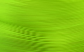 Picture Green, pattern, color