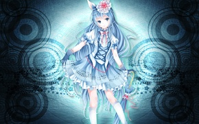 Picture girls, neko, long hair, blue hair, Wallpaper anime, green-eyed on your desktop