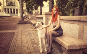 Picture girl, the city, dog, Anya, redhead, bench, Dmitrij Butvilovskij