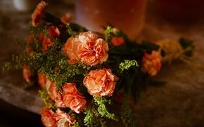 Picture flowers, bouquet, clove