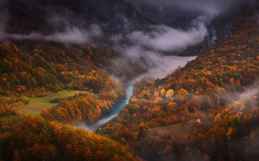 Picture forest, river, trees, mountains, autumn, paint, tum