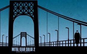 Picture bridge, minimalism, konami, Metal Gear Solid 2: Sons of Liberty, mgs