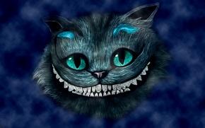 Picture blue, smile, head, Alice in Wonderland, Alice in Wonderland, Cheshire cat, Cheshire Cat