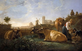 Picture summer, cow, picture, pastorale, Pastoral