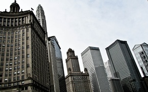 Picture the sky, building, skyscrapers, USA, America, Chicago, Chicago, USA, skyscrapers, center, illinois