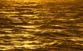 Picture sea, wave, the sun, reflections