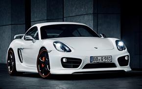 Picture Porsche, Cayman, Porsche, 2013, TechArt, Caiman