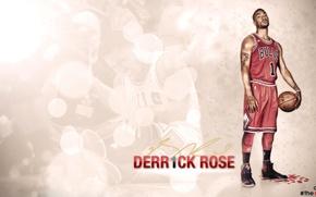 Picture Sport, Chicago, Basketball, Chicago, NBA, Bulls, Derrick Rose, Bulls, Derrick Rose
