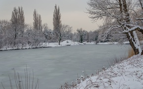 Picture Winter, Snow, Pond, Ice, Frost, Winter, Frost, Snow, Pond, To
