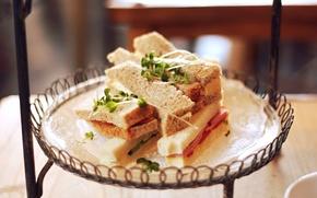 Wallpaper sandwiches, sandwich, bread