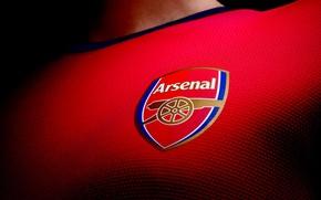 Picture Arsenal, Arsenal, London, Barclays Premier League