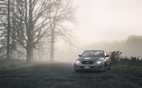 Picture road, trees, tree, cars, subaru, Subaru, legacy, fogs, photo machines, legacy