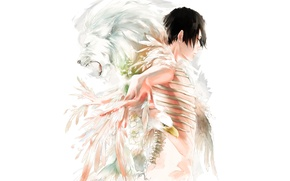 Wallpaper bird, Leo, feathers, bones, guy, art
