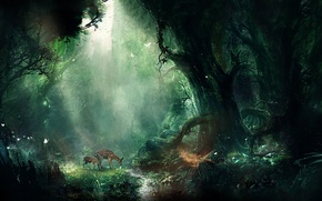 Picture forest, fawn, art, Forest, bambi