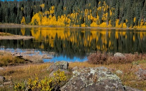 Picture autumn, forest, trees, lake, stone