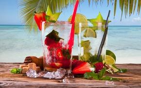 Wallpaper ice, sea, Palma, strawberry, cocktail, sugar, lime, mint